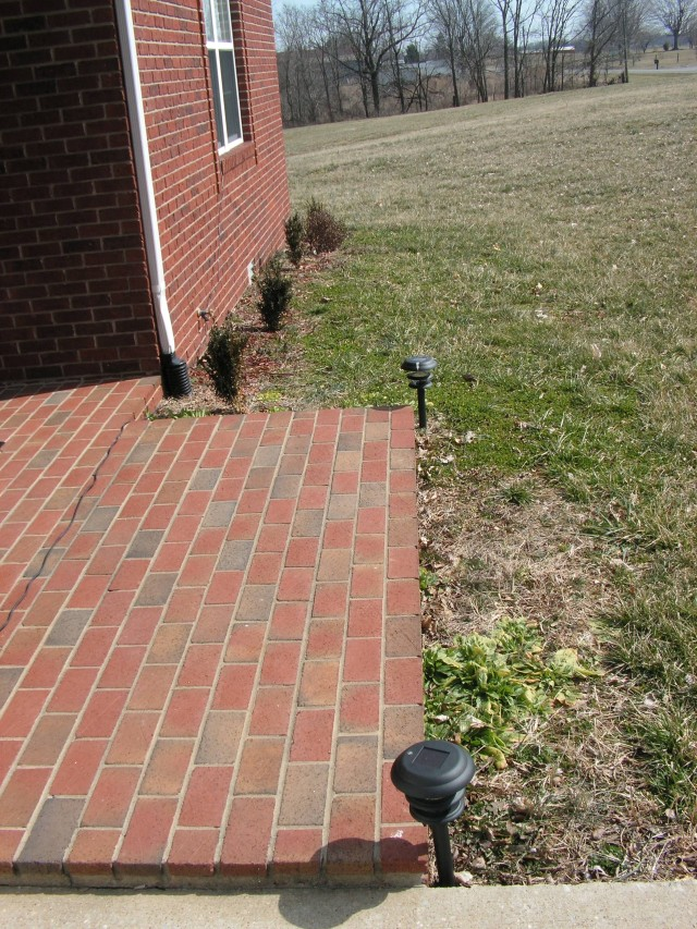 "Our ""lovely"" landscaping"